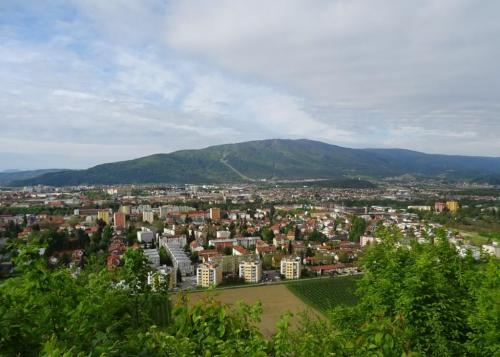50 weg 2 (Kalvarija - Kamnica) (8)